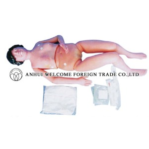 AH976 The Basic Patient Care Mannequin (Natural Size)
