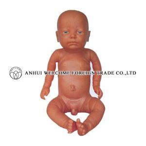 AH986 New Style Newborn Model (Baby Model)