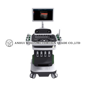 cx2100-l-2d3d4d-color-doppler-ultrasonic-diagnostic-system